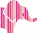 Kohl's Pink Elephant_40%