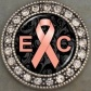 Endometrial (Uterine) Cancer Awareness